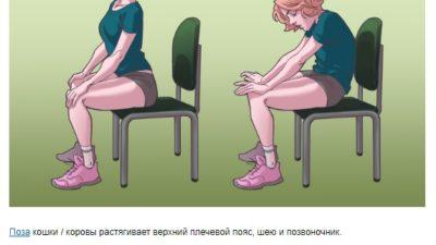 Полезные упражнения на стуле, которые моментально избавят вас от боли в шее, спине и плечах