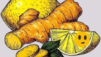Польза имбиря с лимоном для нашего организма