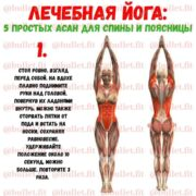 Йога для спины и поясницы