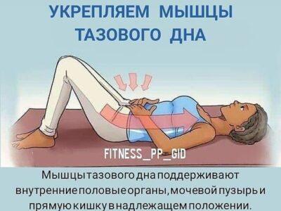 Укрепляем мышцы тазового дна